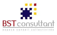 Logo BST Consultant
